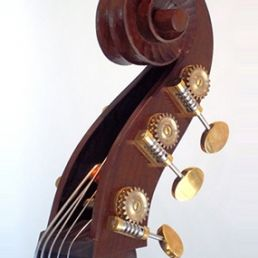 7/8 Lloyd and Penning, 5-string, August '12 - Scroll