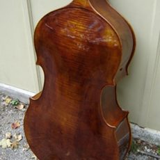 Nick Lloyd Brescian Bass – Back