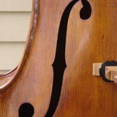 Nick Lloyd Brescian Oil Bass – F-hole