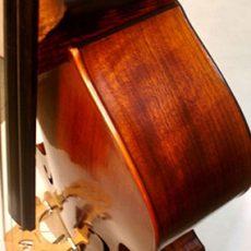 3/4 Lloyd Walnut Bass, September '11 – Ribs