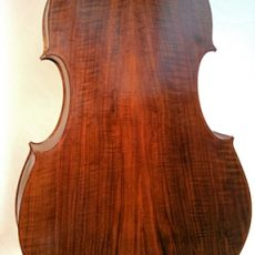 3/4 Lloyd Walnut -Special Outline – Back