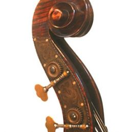 3/4 Lloyd Walnut Bass, September '11 - Scroll